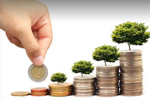 Deal Advisory- start-up Investing